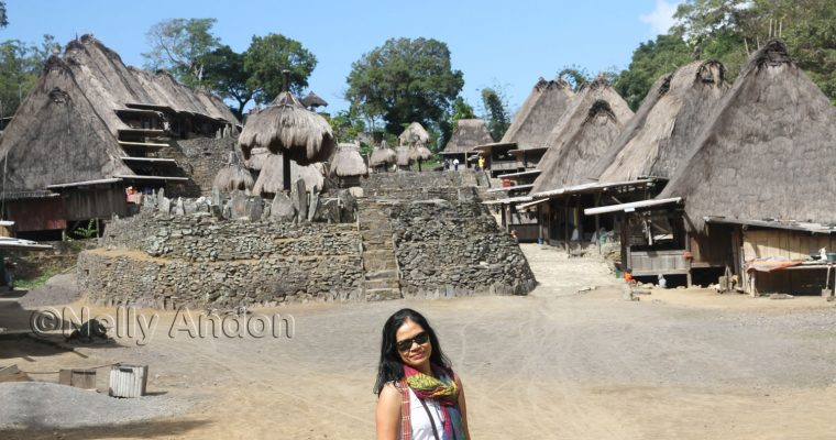 Flores Adventure – A day in Bena Village,  Ngada Region of East Nusa Tenggara