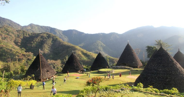 Flores Adventure – Dintor & Wae Rebo Village